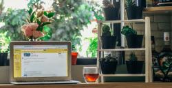 مهارتهای کسبوکاری که هر برنامهنویس فریلنسری باید بداند